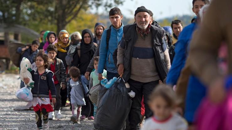 Triest wypłaci 400 euro miesięcznie za przyjęcie uchodźcy