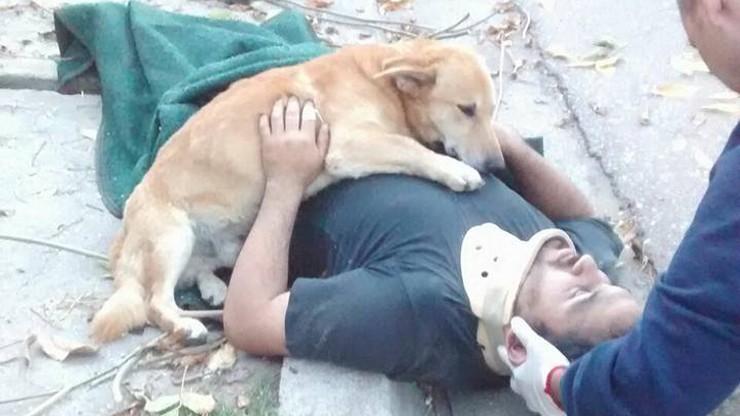 """""""Wierny jak pies"""". To zdjęcie mówi więcej niż 1000 słów"""