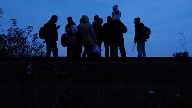Rekordowa liczba uchodźców przekroczyła granicę węgiersko-serbską