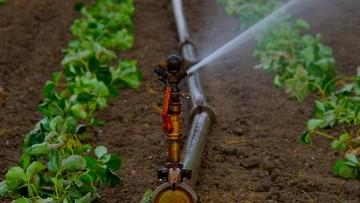 15-06-2016 13:26 Ministerstwo środowiska: opłaty za pobór wody będą trzykrotnie niższe niż planowaliśmy