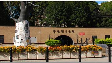 14-06-2016 15:19 Obchody Dnia Pamięci Ofiar Niemieckich Obozów Koncentracyjnych