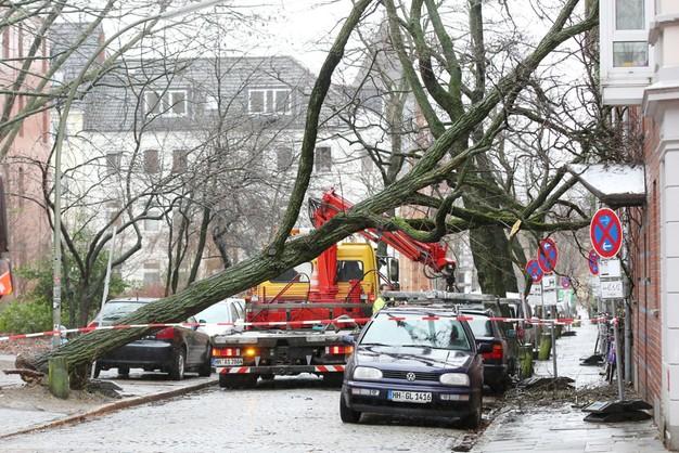 Chaos w Niemczech po przejściu Feliksa