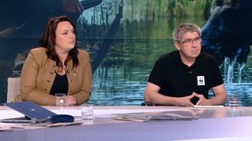 Związek łowiecki o polowaniu na łosie: trzeba ograniczyć konflikty na poziomie człowiek-zwierzę