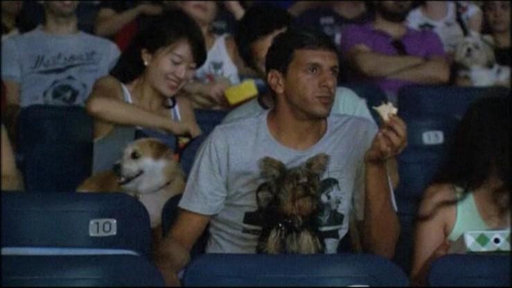Do kina razem z psem
