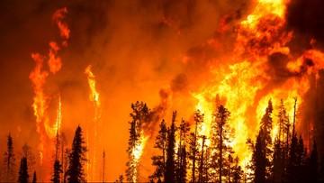 17-07-2017 05:10 Pożary lasów w Kanadzie. 37 tys. osób zmuszonych do ucieczki
