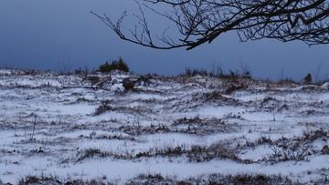 Zima nadchodzi. W czwartek będzie biało niemal w całym kraju