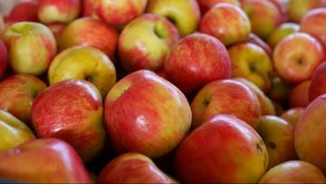 Chiński minister: otwieramy drzwi na polskie jabłka