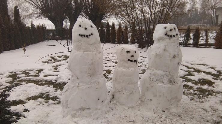 W Skalmierzycach w powiecie ostrowskim ze świeżego śniegu natychmiast powstały piękne bałwany