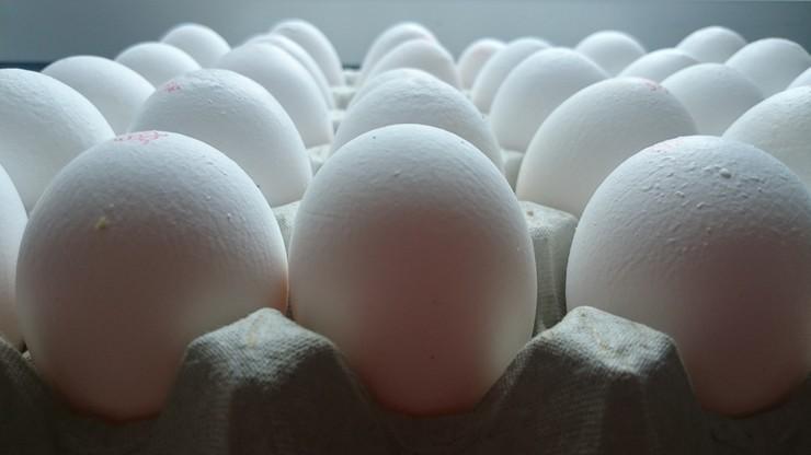 Skażenie milionów jaj środkiem owadobójczym. Niemiecki minister rolnictwa mówi o przestępstwie