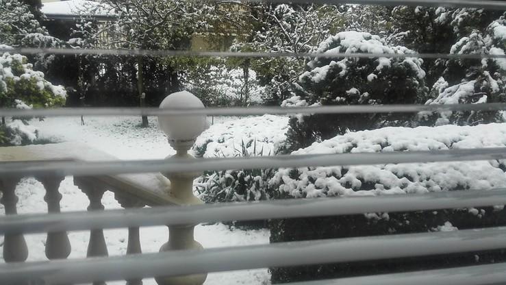 We wtorek śnieg zasypał Koło (woj. wielkopolskie)
