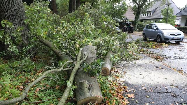 Niemcy: co najmniej 6 ofiar śmiertelnych orkanu Ksawery