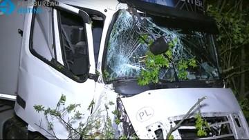 Kierowca polskiej ciężarówki uderzył w Holandii w drzewo. I zniknął