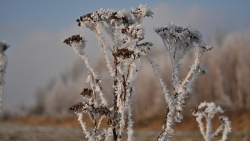 Pierwszy śnieg w Beskidach; warunki turystyczne są trudne