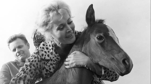 USA: Zmarła aktorka Zsa Zsa Gabor uważana za prototyp celebrytki