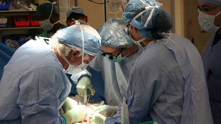 Ministerstwo analizuje możliwość legalizacji przeszczepu narządów rodnych