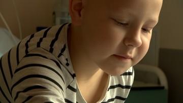 Grzyb i pleśń w mieszkaniu komunalnym. 7-letnia Oliwia musi zostać w szpitalu