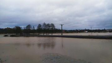 2017-02-23 Powódź pod Lublinem. Woda na polach w Chrzanowie