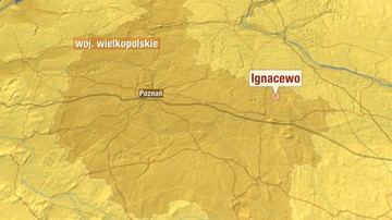 14-10-2016 08:09 Kilkanaście osób rannych w wypadku w Ignacewie. Bus zderzył się czołowo z samochodem osobowym