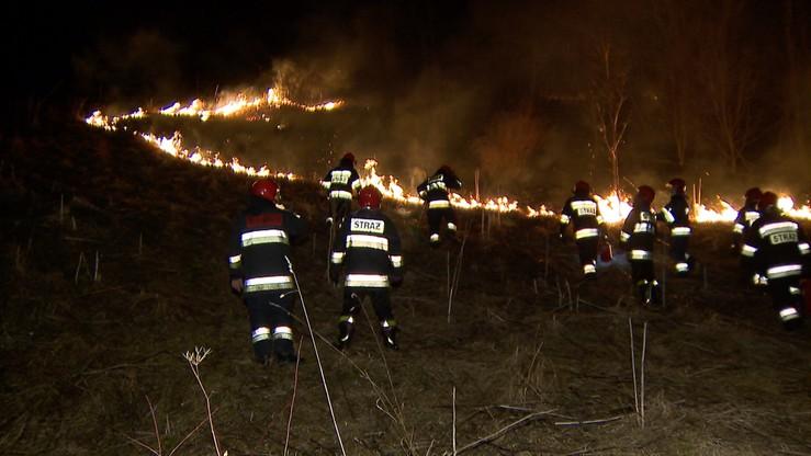 Pożar w Zakopanem. Halny zerwał trakcję energetyczną, zapaliła się łąka