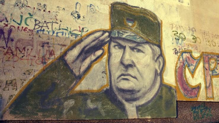 """""""To nie potwór, to żołnierz"""" - obrońcy Mladicia w Hadze"""