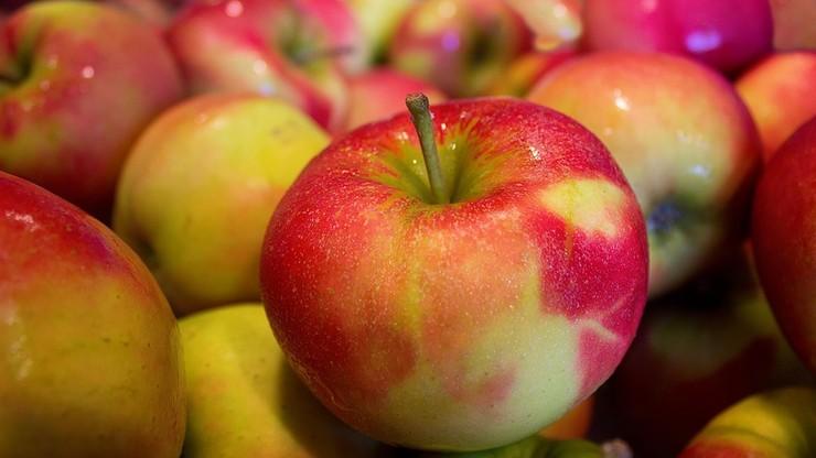 """Polskie jabłka w USA. """"Sprawa miesięcy, a może nawet tygodni"""""""