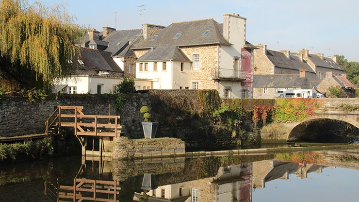 Druid zamiast lekarza we francuskim miasteczku