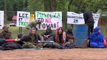 KE może pozwać Polskę za wycinkę w Puszczy Białowieskiej