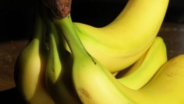 23-04-2016 13:01 Bananowa katastrofa. Tych owoców niebawem może zabraknąć
