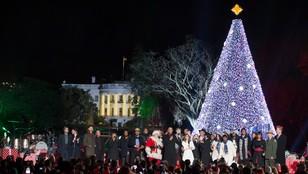 USA: prezydent Obama zapalił lampki na drzewku świątecznym