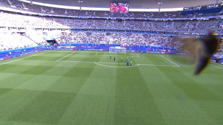 Portugalia - Francja: Piłkarze zaatakowani przez... owady!