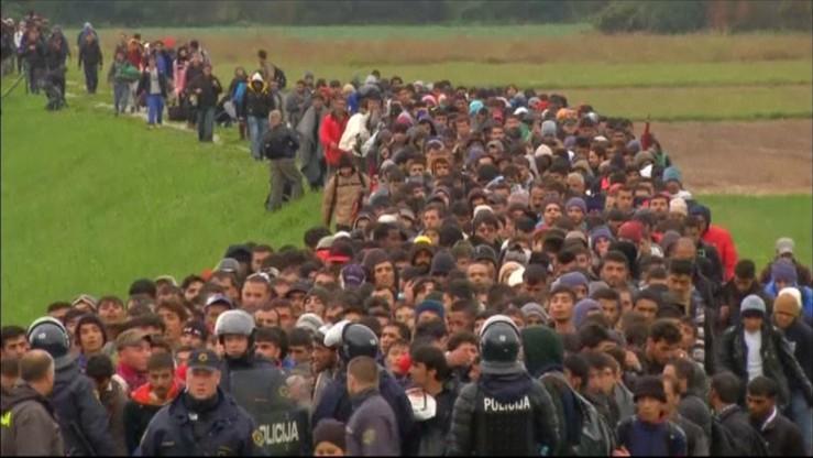 Chorwacja otworzyła granicę z Serbią dla migrantów