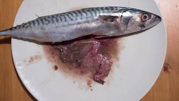 31-08-2016 19:30 Kupił rybę w hipermarkecie, a w niej - kłębowisko pasożytów