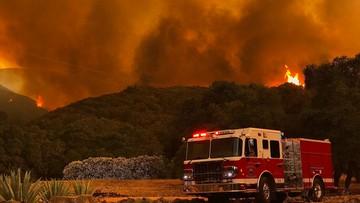 09-07-2017 06:23 Rekordowe upały w Kalifornii. Odnotowano 17 pożarów lasów
