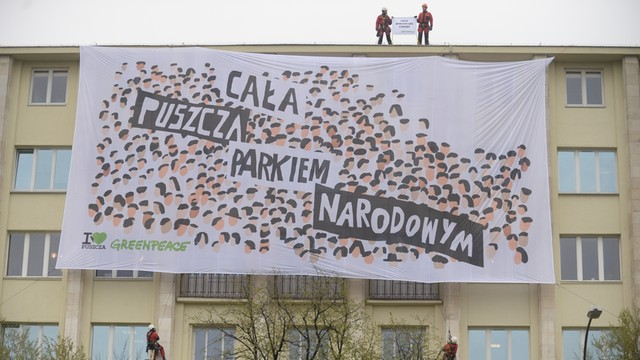 Puszcza Białowieska nadal na liście UNESCO; spór jednak nie gaśnie