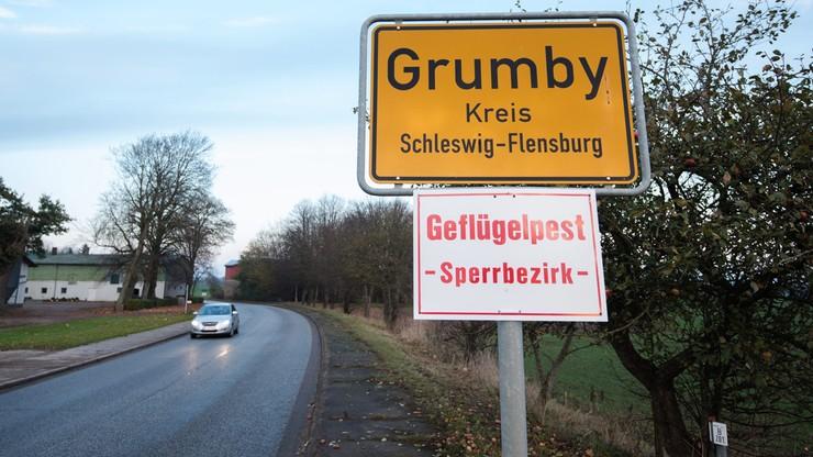 """Już dwa ogniska ptasiej grypy na północy Niemiec. """"Wysoce zaraźliwy wirus"""""""
