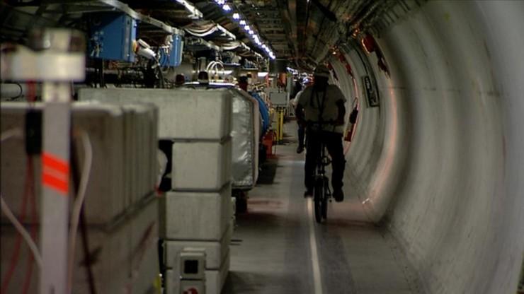 Łasica zatrzymała Wielki Zderzacz Hadronów