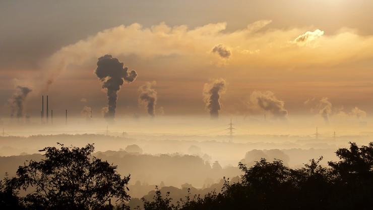 Zanieczyszczenie powietrza zwiększa ryzyko chorób nerek. Wyniki badań naukowców