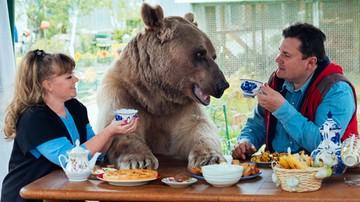 05-07-2016 18:55 Mieszkają z niedźwiedziem. Sam na siebie zarabia