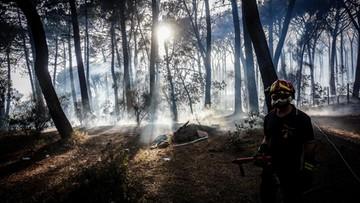 17-07-2017 13:17 Pożary w Czarnogórze. Ewakuowano turystów
