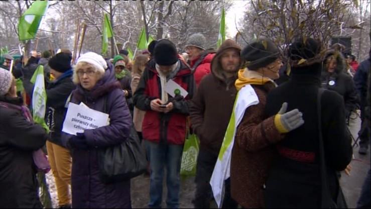 """W Warszawie """"marsz entów"""" w obronie Puszczy Białowieskiej. """"Nie róbcie z puszczy lasu gospodarczego"""""""