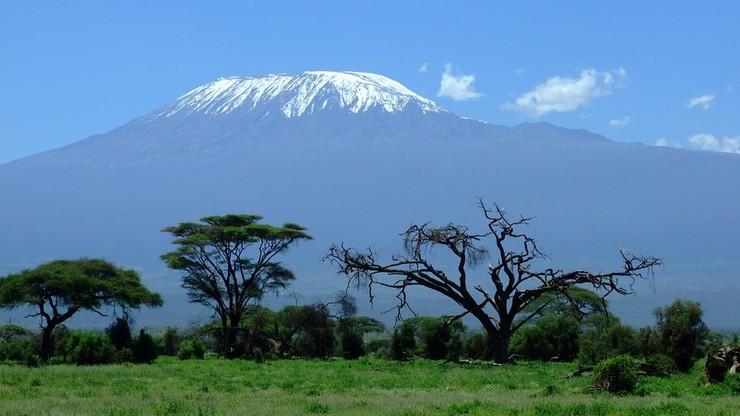 Mecz piłkarski na szczycie Kilimandżaro? Niezwykły pomysł grupy kobiet