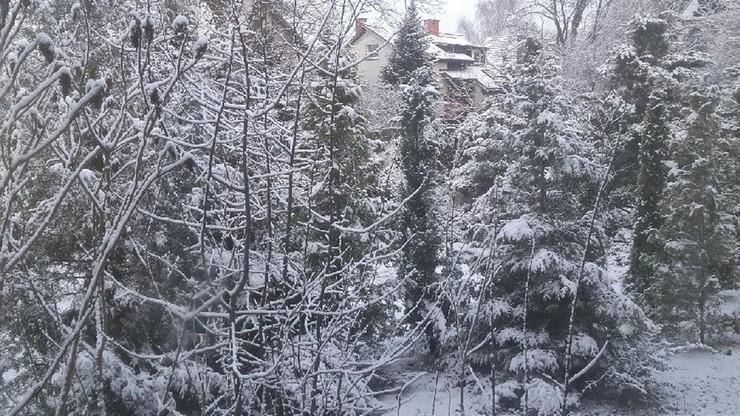 2017-03-07 Zimowy poranek zaskoczył mieszkańców Gdańska Osowej