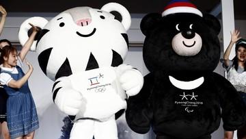 Przedstawiono oficjalne maskotki igrzysk w Pyeongchang