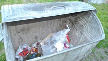 19-05-2016 13:58 Zabił pięć szczeniaków i wrzucił je do kontenera na śmieci