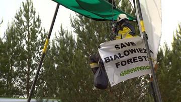Blokowali sprzęt do wycinki drzew w Puszczy. Ruszył proces ekologów