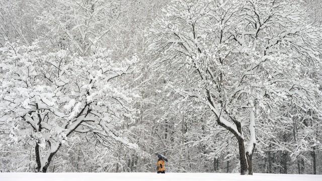 Bułgaria: Atak zimy, zamknięte szkoły, tysiące ludzi bez prądu i wody