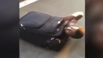 07-07-2016 19:36 Uchodźca ukrył się w walizce. Chciał przekroczyć granicę [WIDEO]