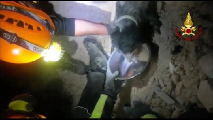 Włoscy ratownicy odkopali psa z gruzowiska. Przeżył trzęsienie ziemi