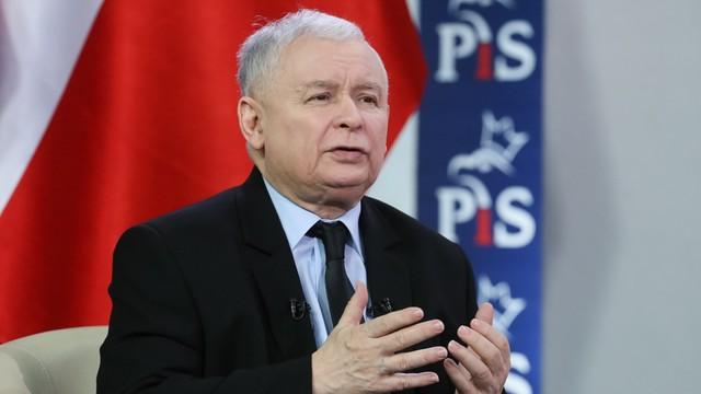 Kaczyński: Przepisy dotyczące wycinki drzew na prywatnych posesjach będą zmienione
