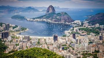 28-05-2016 07:51 Lekarze chcą, by przełożono igrzyska. Winny wirus Zika
